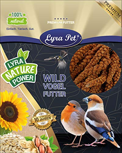 Lyra Pet® 15 kg Kolbenhirse 15000 g rot Vogelfutter Sittich Kanarienvögel handverlesen