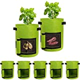 Potato Grow Bags with Flap 10 Gallon, 5 Pack Planter Pot with Handles and Harvest Window for Potato Tomato and Vegetables, Green