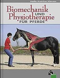 Massage fürs Pferd: Tipps, wie du dein Pferd gesund massieren kannst 3