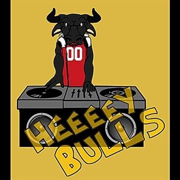 Heeeey Bulls