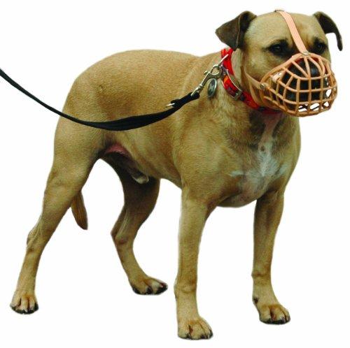 Company of Animals Baskerville Maulkorb Größe 12 passend für Pit Bull, Staff Bull Terrier