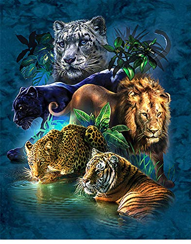 Maysurban 5D DIY Diamant Stickerei Diamant Malerei Diamond Painting Bilder Tiere Gemälde Erwachsene DIY Handwerk Pictures für Zuhause Wand Décor (30 x 40 cm, Tiere)