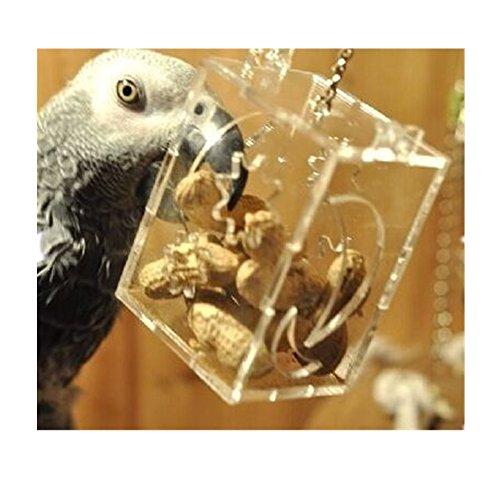 LIANCHI Parrot Creative Foraging Toy Alimentation Bird Intelligence Croissance Cage Boîte Acrylique Jouets