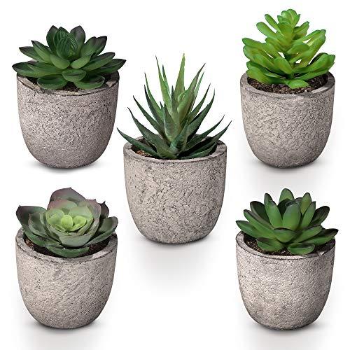 Homemaxs Mini gefälschte Pflanzen, 5 PCS künstliche Sukkulenten in Töpfen, dekorative Pflanzen für Schreibtisch, Heim, Bürodekor mit grauen Retro-Töpfen und stoßfester Verpackung