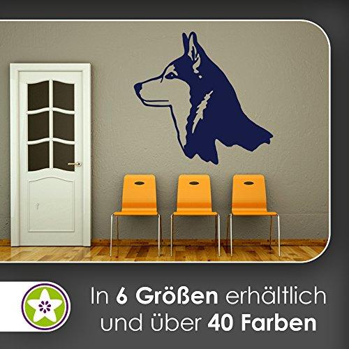 KIWISTAR Husky - Hund Rasse Sibirien Schlitten Wandtattoo in 6 Größen - Wandaufkleber Wall Sticker