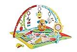 Fisher-Price Gimnasio aprendizaje de perrito, manta de juego bebé (Mattel FBD48) , color/modelo surtido