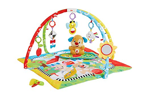 Fisher-Price Gimnasio aprendizaje de perrito, manta de juego bebé (Mattel FBD48) ,...