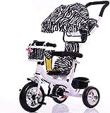 Cxjff Tricycle, pequeño carruaje para niños de interior y exterior, de plástico, 7 meses a 6 años, con toldo de espuma