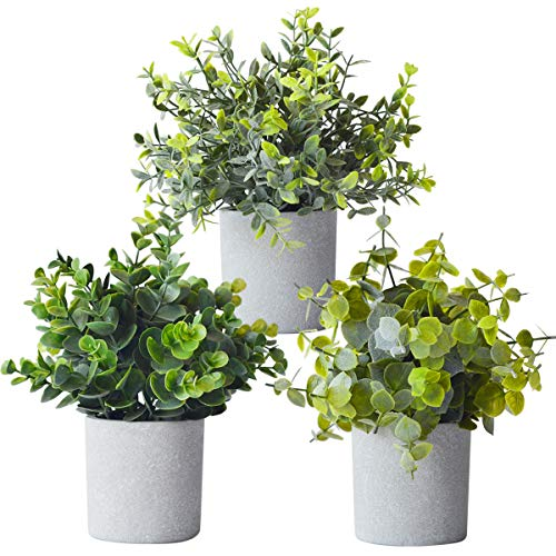 Farmhouse Mini Plants Plants Fake Eucalyptus Plant for Indoors Artificial Potted 3 Pack Home Decor Bookshelf Table Decorations Living Room Kitchen Office Small Faux Boxwood Set of 3