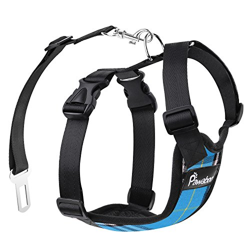 Pawaboo Cinturón de Arnés de Chaleco de Seguridad para Perros, Mascotas Arnés Ajustable para el Conductor para Perros de 11 lb-33 LB, Reticular Azul