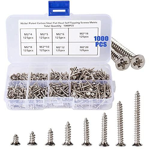 Holzschrauben, 1000 Stück Schrauben Selbstschneidende Schrauben Sortiment Set, Flachkopf Schraube mit Aufbewahrungsbox für Kunststoff Holz Silber, M2 x (4 mm - 20 mm)