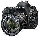 Canon デジタル一眼レフカメラ EOS 6D Mark II EF24-105 IS STM レンズキット EOS6DMK2-24105ISSTMLK