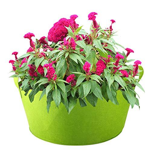 YIREAUD Hochbeet aus Stoff, 19 Liter, rund, erhöht, Pflanzsack, Gartenbeet, zum Einpflanzen von Kräutern, Blumen, Gemüse, Kartoffelpflanzen