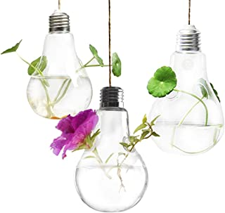 3 Hanging Light Bulb Plant Pot with Strings - Planter Terrarium for Home Refurbishment - Stylish Decor to Purify air - Effortless Setup - Ecological Miniature Garden - Perfect for Small House Plants