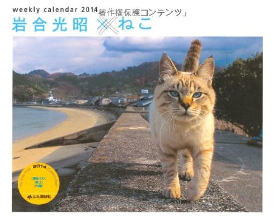 自宅でアンペアバスケットボール岩合光昭×ねこ  週めくり (ヤマケイカレンダー2014 Yama-Kei Calendar 2014)