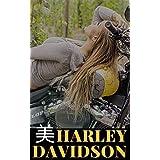 美しき輝き Harley Davidson 美1