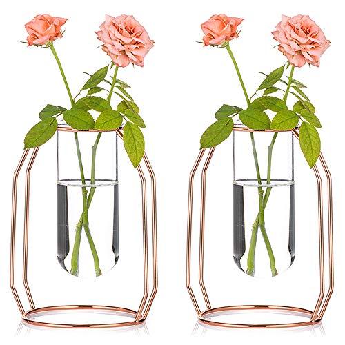 Vazen Set Van 2 Glazen Vazen Met Metalen Frame Van 16cm Hoog, Moderne Roségouden Frame Cilinder, Doorzichtige Vaas, Plantenbak, Terraria, Bloemenhouderversieringen voor de Woonkamer, Kantoor, Feest