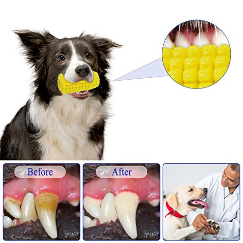 Product Image 2: PEWOD Dog Toothbrush Chew Toy for Aggressive Chewers