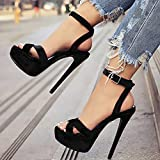Women's Peep Open Toe Platform Sky High Stiletto Heel Ankle Strap Buckle Party Sandals Sexy Sandals Pole Fitness Dancer Heel Platform Sandal for Wedding Party Prom,Black,10.5