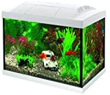Superfish Start 20 Goldfish Aquarium LED - 20 L - Wit - 36 x 23 x 32.1 cm