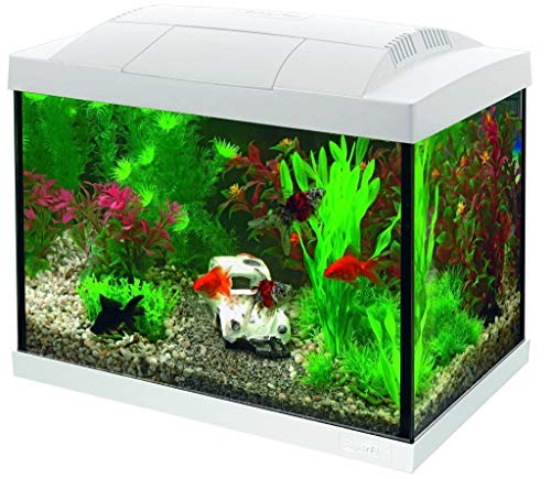 Superfish Start 20 Goldfish Aquarium LED - 20 L - Wit - 36 x 23 x 32.1 cm