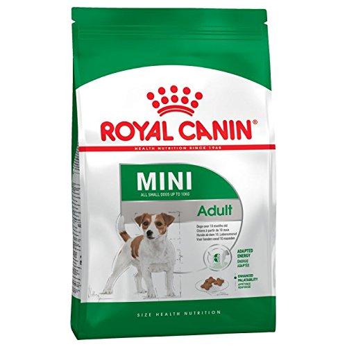 ROYAL CANIN Mini Adult Small 2kg