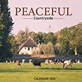 Peaceful Countryside Calendar 2022: Great 18-month Mini Grid Calendar 2022 from July 2021 to December 2022 for all fans!!!