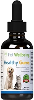 Best healthy gums for canine periodontal health Reviews
