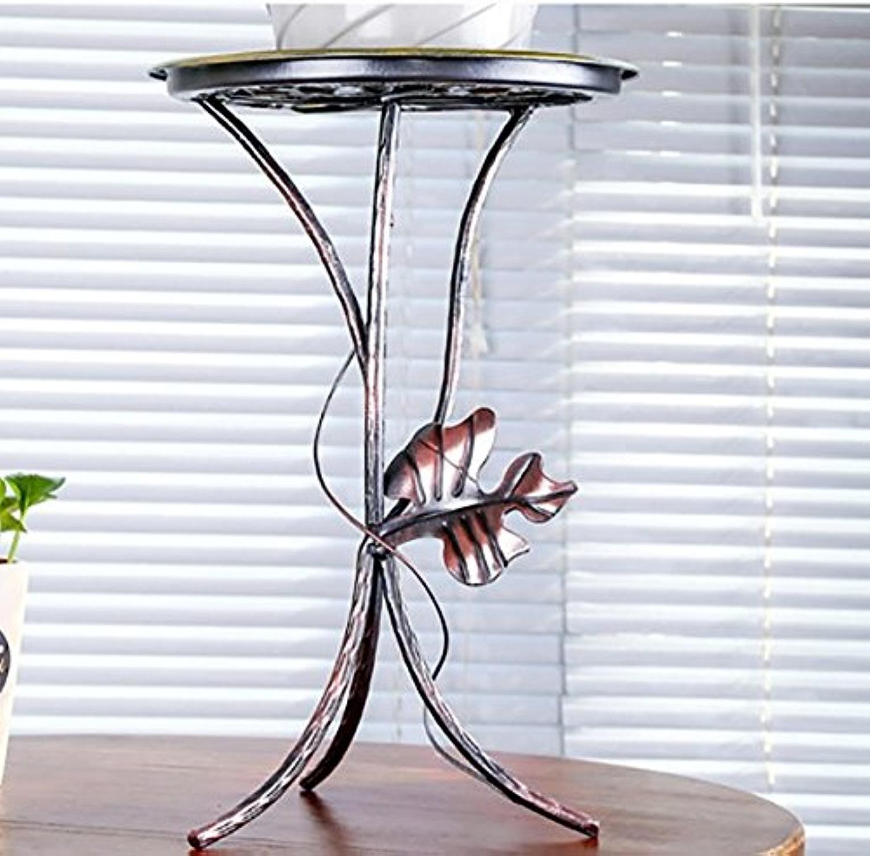 LongYu Fer Intérieur Bureau Plateau Fleur étagère Salon Européen Balcon Plancher Fleur Pots Plateau (Couleur   Bronze)