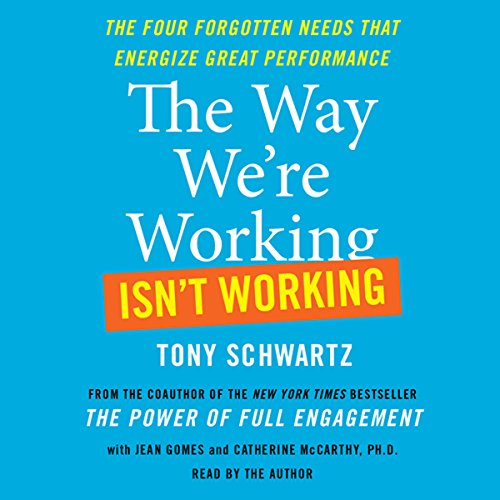 The Way We're Working Isn't Working audiobook cover art