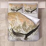 888 - Juego de cama (3 piezas, microfibra, 230 x 200 cm, con cierre de cremallera, 2 fundas de almohada de 80 x 80 cm), microfibra, Colora, 230x220cm