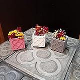 3 Mini Macetas Panots, baldosa Panots, rachola de Barcelona, mini jarrones, mini floreros, despedidas, bodas, evento, regalo de Barcelona