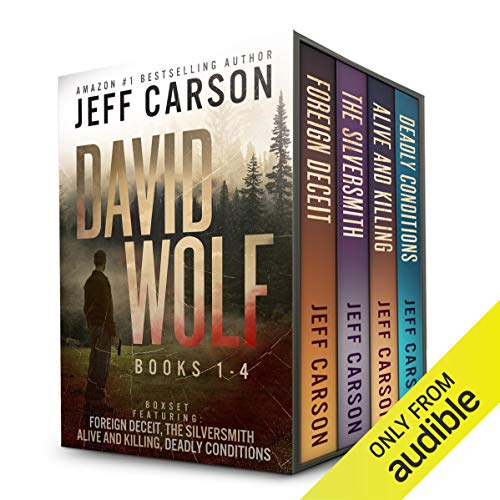 The David Wolf Mystery Thriller Series: Books 1-4 audiobook cover art