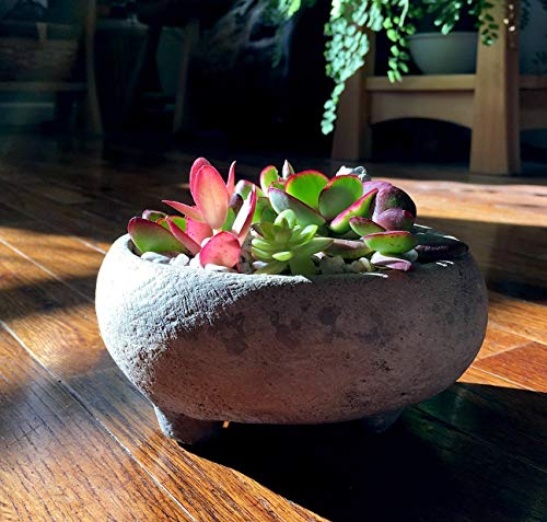 Rustic Footed Handmade Stone Bowl Succulent Planter
