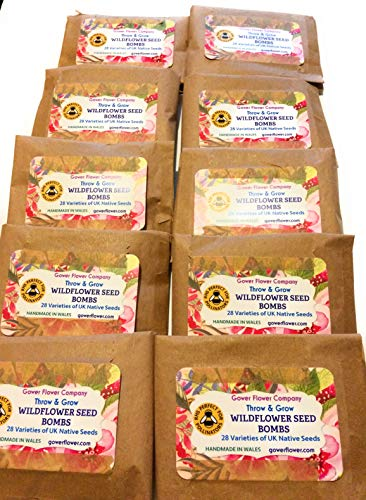 Gower Flower Company Wildflower Seed Bomb 10 x Party Pack
