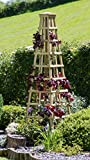 Parcel in the Attic Solidwood Garden Obelisk