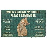 3D覚えておいてくださいオレンジタビー子猫猫ハウスルールカスタム玄関マットインテリアドアマット家の装飾エリアマットクリスマスハロウィーン元日ギフト