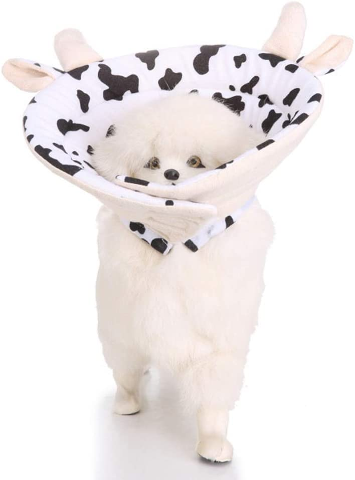 GRKD Protective Cone Many popular brands Collar for Dogs Woun Ranking TOP3 Recovery and Cats Pet