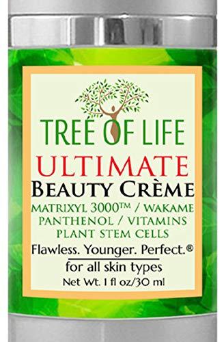 Crème Visage Anti vieillissement - Crème anti-âge pour la peau