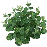 TinaWood Real Touch Leaf Artificial Eucalyptus Branches Stem Faux Eucalyptuses Wedding Bouquet Centerpiece Home Decor (Green, 5)