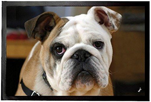 1art1 honden- jongen Engelse Bulldog deurmat deurmat, bovenkant: polyamide, achterkant: PVC, kleurrijk, 60 x 40 x 0,5 cm