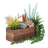 WuGeShop - Juego de 10 plantas suculentas falsas en macetas de madera, suculentas y sintéticas surtidas