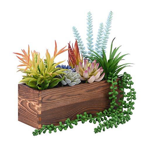 WuGeShop - Caja de madera para plantas (plantas de cultivo no incluidas)