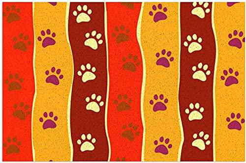 FFLSDR Felpudo Brillante para Gatos o Perros, Alfombrillas de Bienvenida, Alfombrilla de Entrada, Alfombra para el hogar, alfombras de baño de PVC, alfombras de Cocina 40X60CM