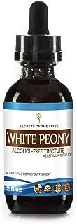 White Peony Alcohol-Free Liquid Extract, Organic White Peony (Paeonia Lactiflora) Tincture Supplement (2 FL OZ)