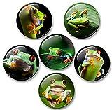 Merchandise for Fans Frosch grün mit roten Augen - 6