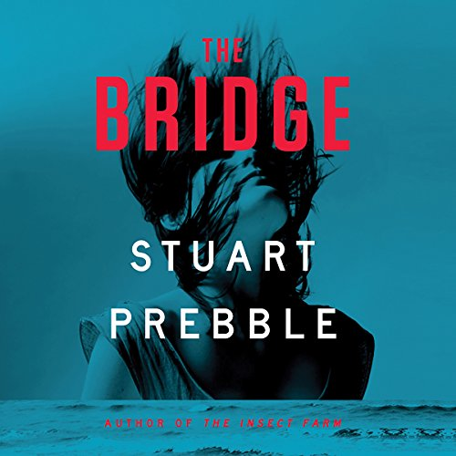 The Bridge cover art
