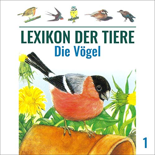 Die Vögel audiobook cover art