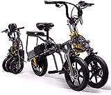 Bicicleta electrica 14 'Bicicleta de trekking / turismo eléctrico, bicicleta eléctrica plegable de 3 ruedas para adultos, batería de litio extraíble de 350W 48V aleación ligera de la aleación eléctric