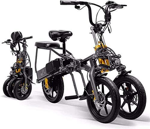 Bicicleta electrica 14
